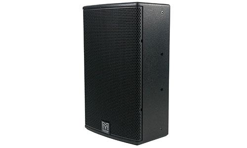 DDX10 Full Range Loudspeaker