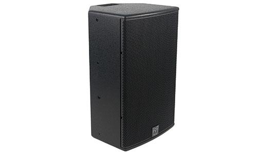 DDX12 Full Range Loudspeaker